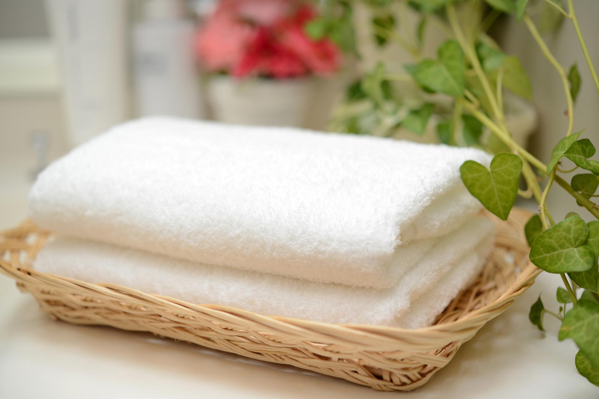 タオル洗面イメージ